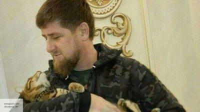Разман Кадыров рассказал о результатах медобследования